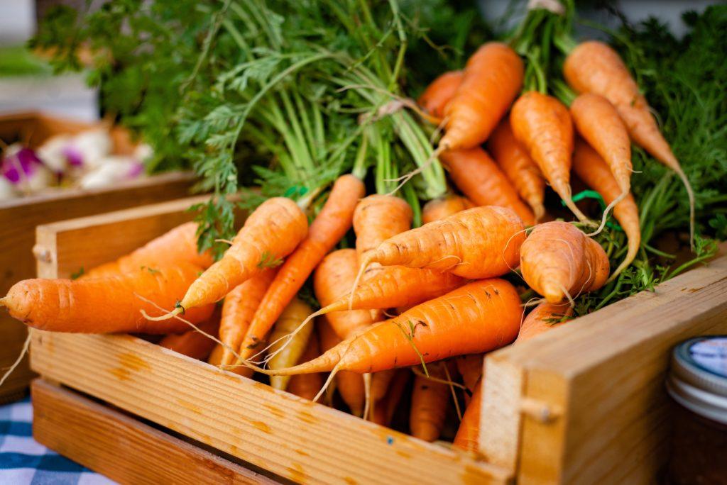 Carrot 1024x684, Best Garden, Home And DIY Tips