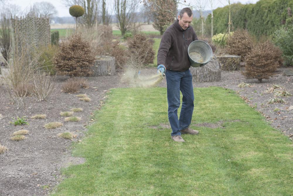 Fertilize 2, Best Garden, Home And DIY Tips