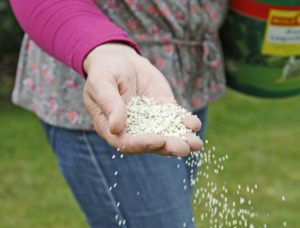 fertilizer, How toxic is lawn fertilizer really?, Best Garden, Home And DIY Tips