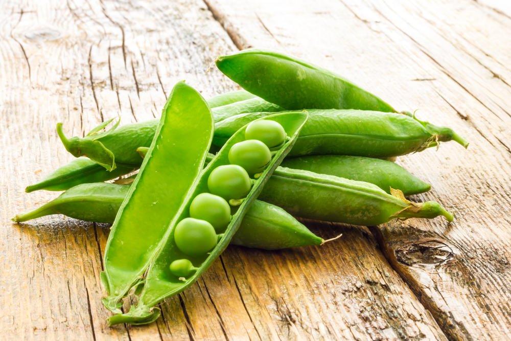 Growing Vegetables 5, Best Garden, Home And DIY Tips
