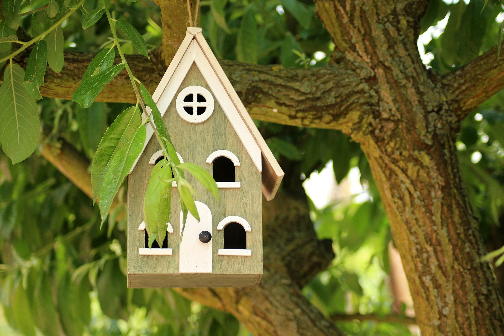 How to build a bird house yourself: building instructions for bird houses