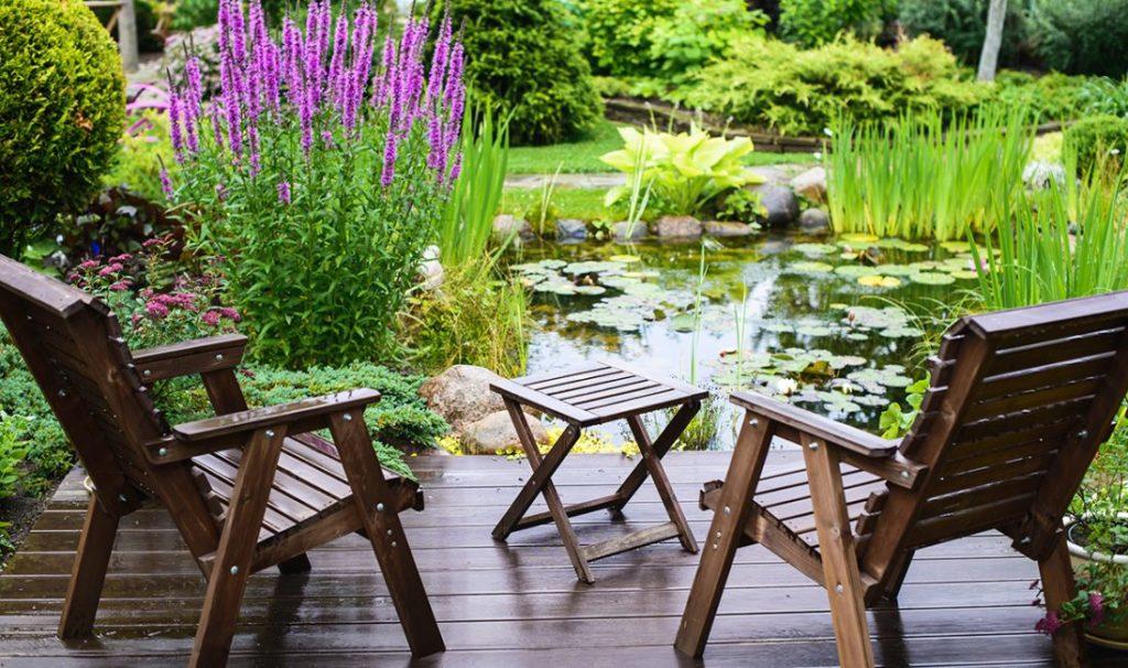 Flowers 6 1024x606, Best Garden, Home And DIY Tips