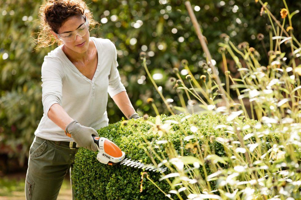 Garden 14, Best Garden, Home And DIY Tips