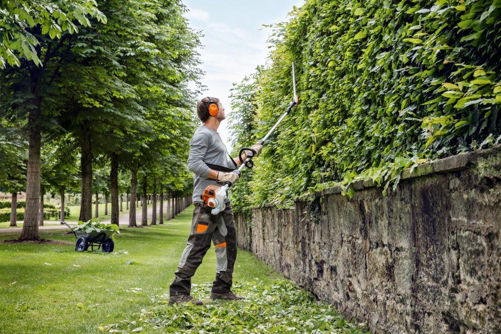 Garden 16, Best Garden, Home And DIY Tips
