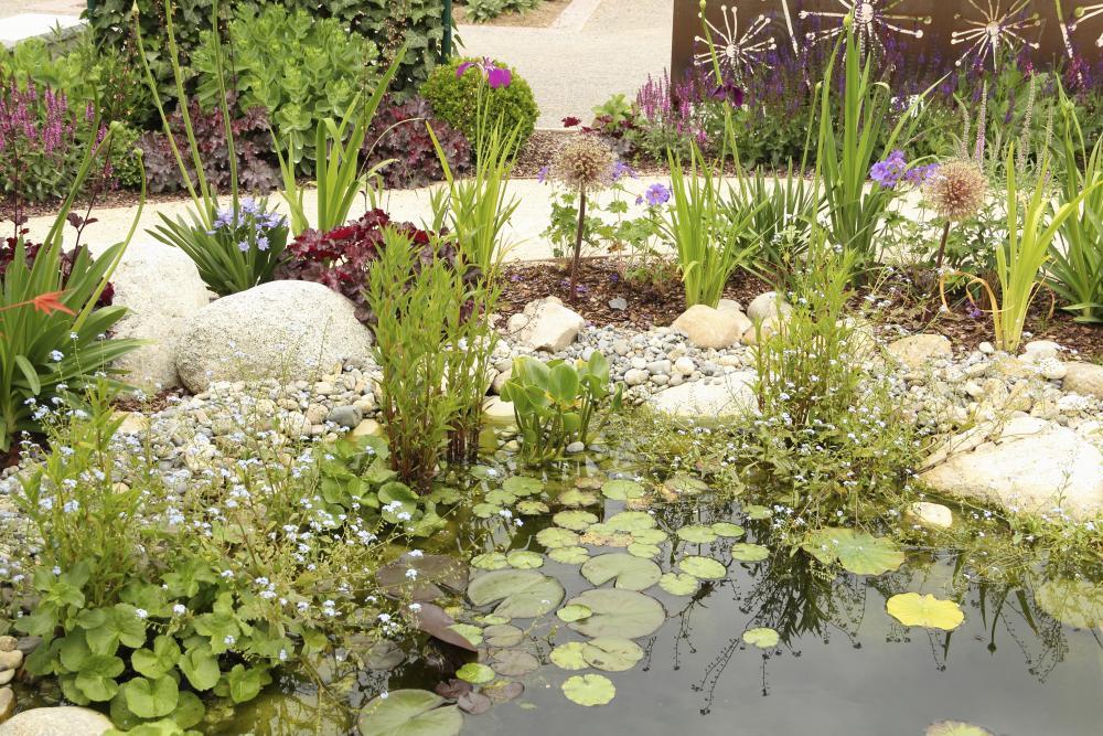 Garden 21, Best Garden, Home And DIY Tips