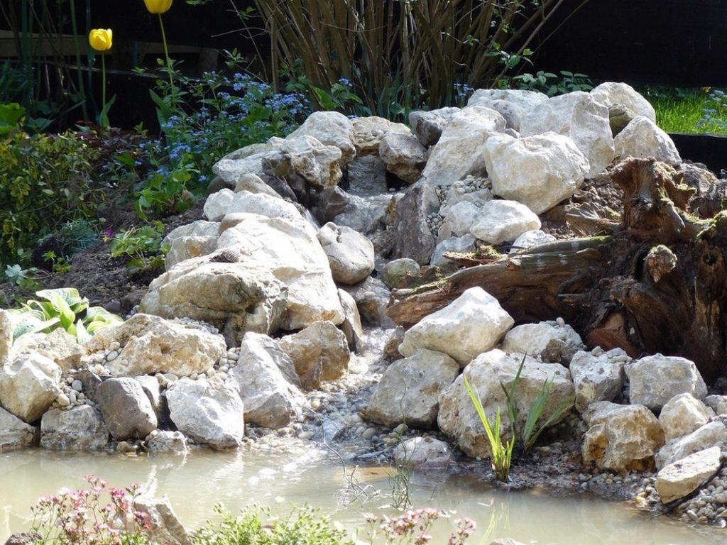 Garden 27 1024x768, Best Garden, Home And DIY Tips