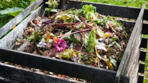 compost, How to properly lay out and implement compost, Best Garden, Home And DIY Tips