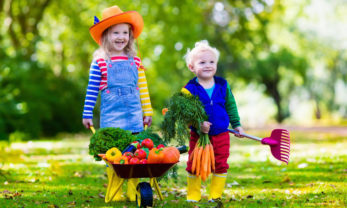 children, Garden For Kids | The garden as a children's playground: tips and ideas, Best Garden, Home And DIY Tips