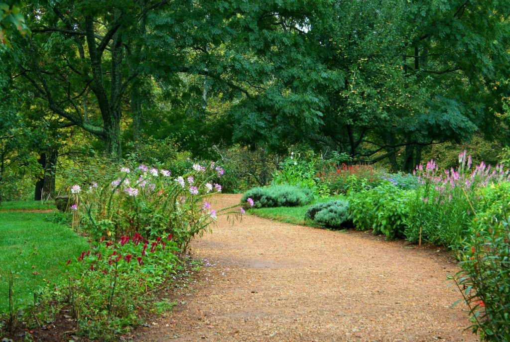 Garden Path 59151 1920 1024x687, Best Garden, Home And DIY Tips
