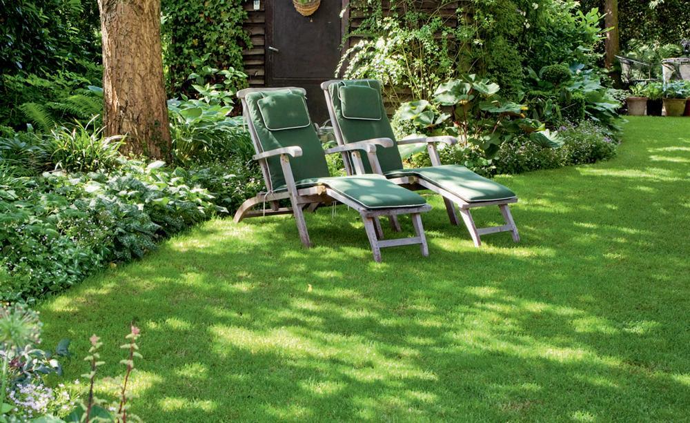 Garden Tips 2, Best Garden, Home And DIY Tips