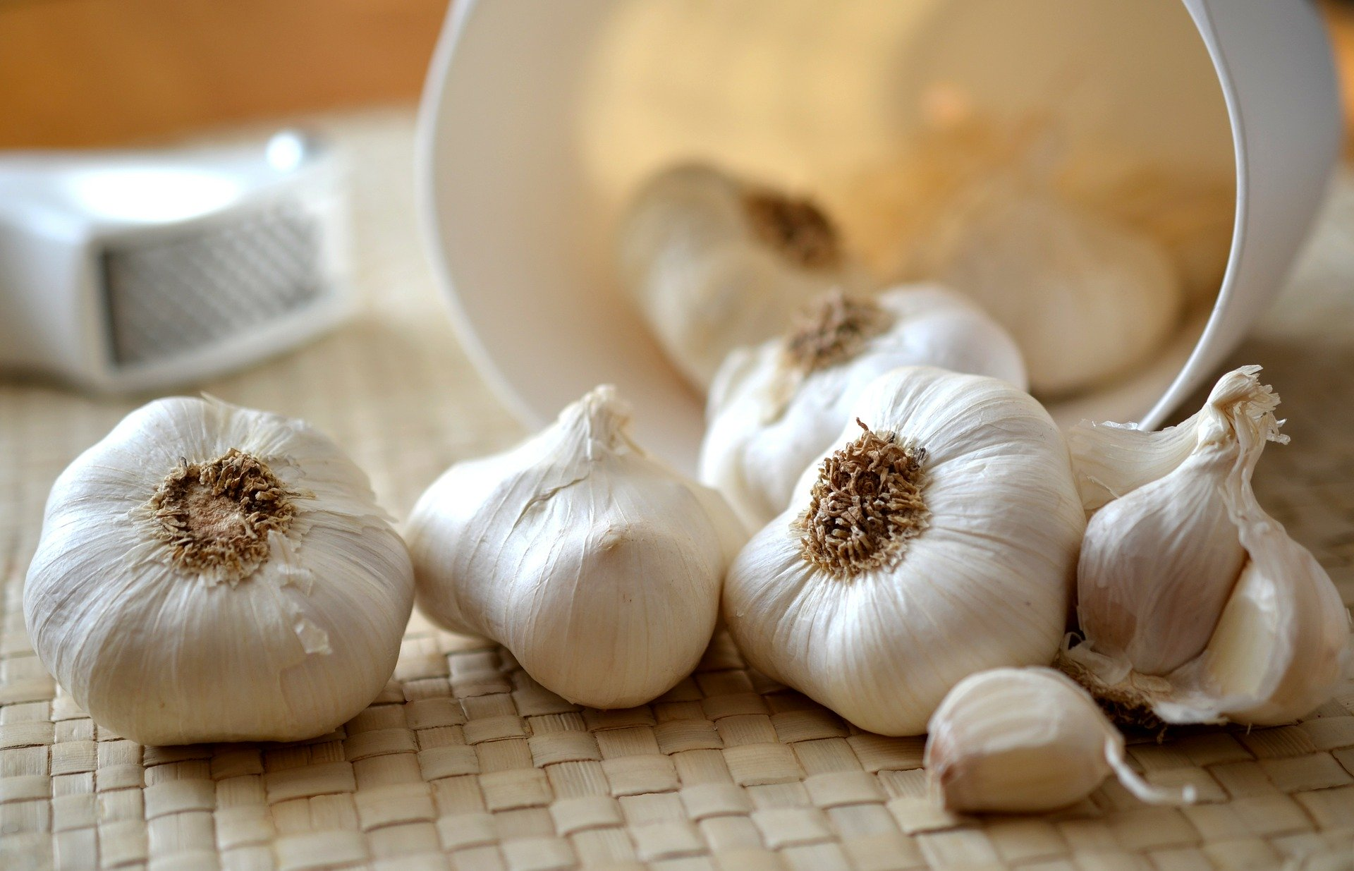 planting garlic, Planting garlic: how to grow it, Best Garden, Home And DIY Tips