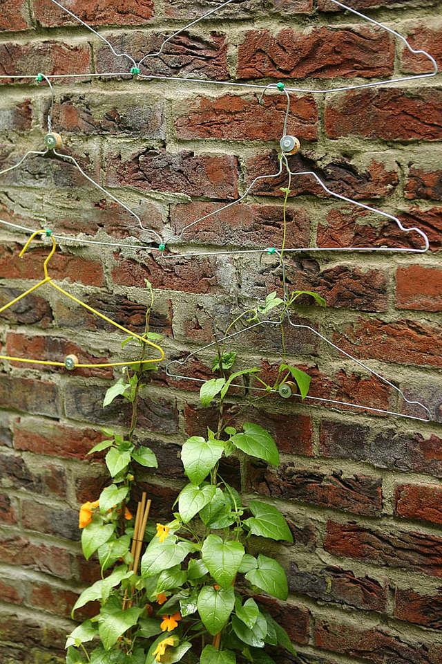 Hack 2, Best Garden, Home And DIY Tips