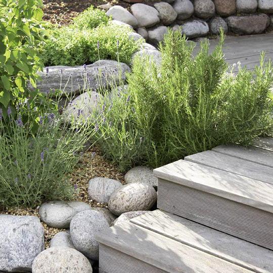 Herb Garden 3, Best Garden, Home And DIY Tips