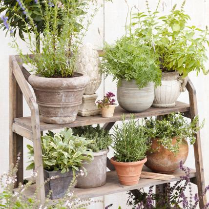 Herb Garden 6, Best Garden, Home And DIY Tips