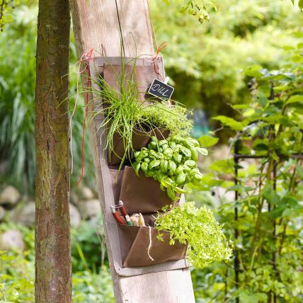 Herb Garden 7, Best Garden, Home And DIY Tips
