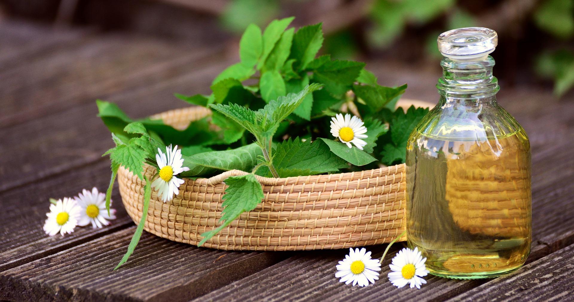 herb garden, Create and maintain herb garden, Best Garden, Home And DIY Tips