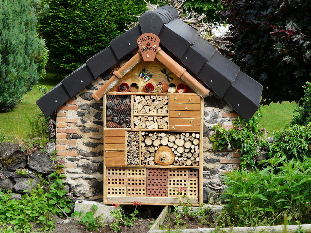 Insecthotel 4 1024x768, Best Garden, Home And DIY Tips