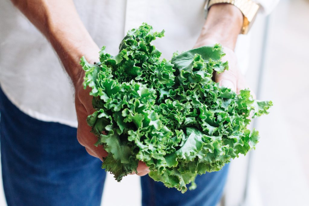 Kale 1024x683, Best Garden, Home And DIY Tips
