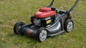 , Attention! These mistakes harm your lawn, Best Garden, Home And DIY Tips