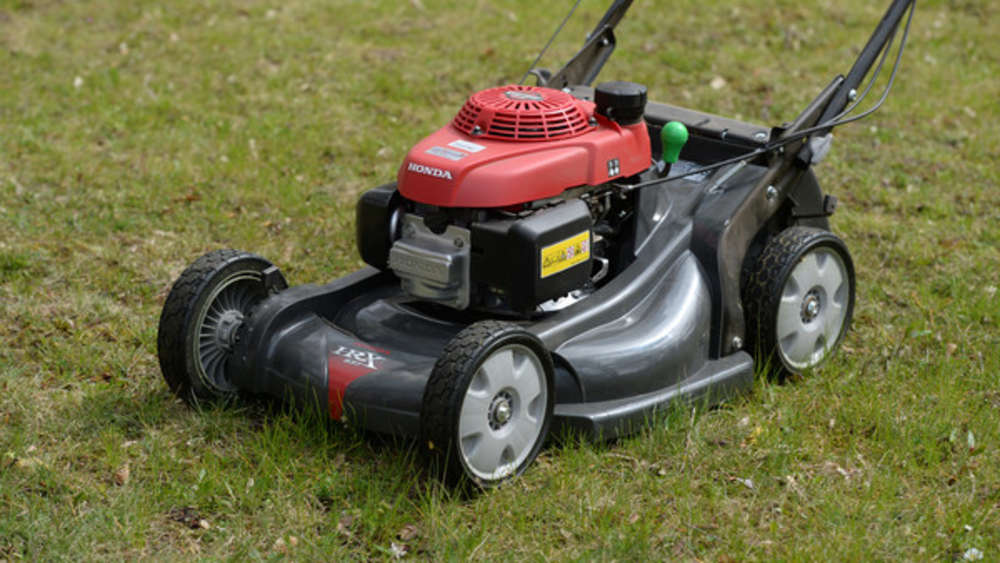 Attention! These mistakes harm your lawn