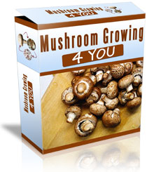Mushroom Book, Best Garden, Home And DIY Tips