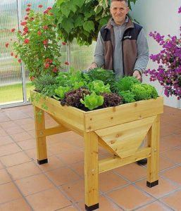 raised bed, Build and plant raised beds: how it works, Best Garden, Home And DIY Tips