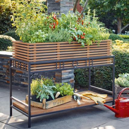 Raised Beds 4, Best Garden, Home And DIY Tips