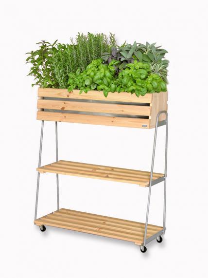 Raised Beds 5, Best Garden, Home And DIY Tips