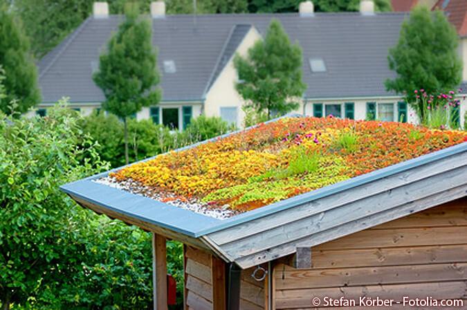 Roof Weight, Best Garden, Home And DIY Tips