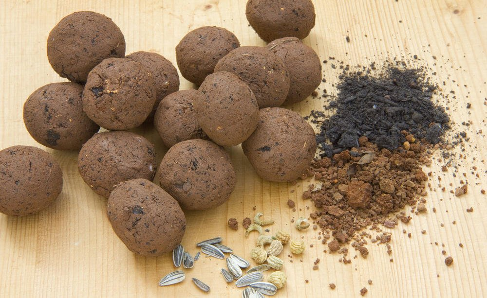 Seedbombs 3, Best Garden, Home And DIY Tips