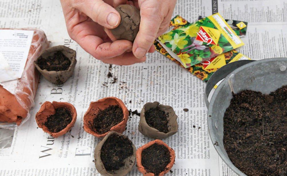 Seedbombs 4, Best Garden, Home And DIY Tips