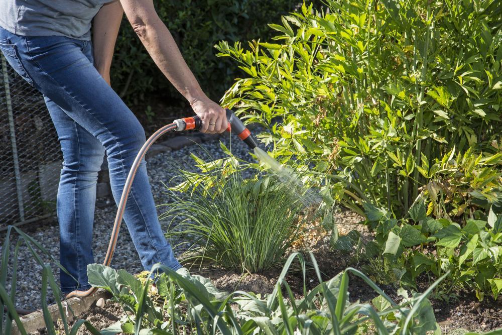 Vegetable Garden 3, Best Garden, Home And DIY Tips