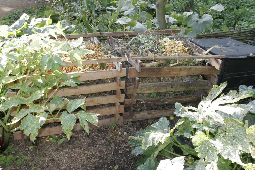 Vegetable Garden 4, Best Garden, Home And DIY Tips