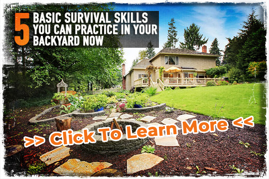 Basic Survival Skills, Best Garden, Home And DIY Tips