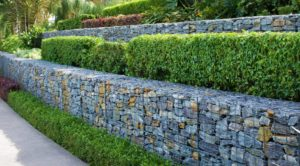 gabion, Planting gabions: ideas, instructions and tips for copying, Best Garden, Home And DIY Tips