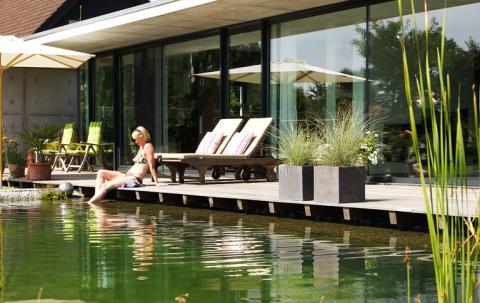 Garden Pond 3, Best Garden, Home And DIY Tips