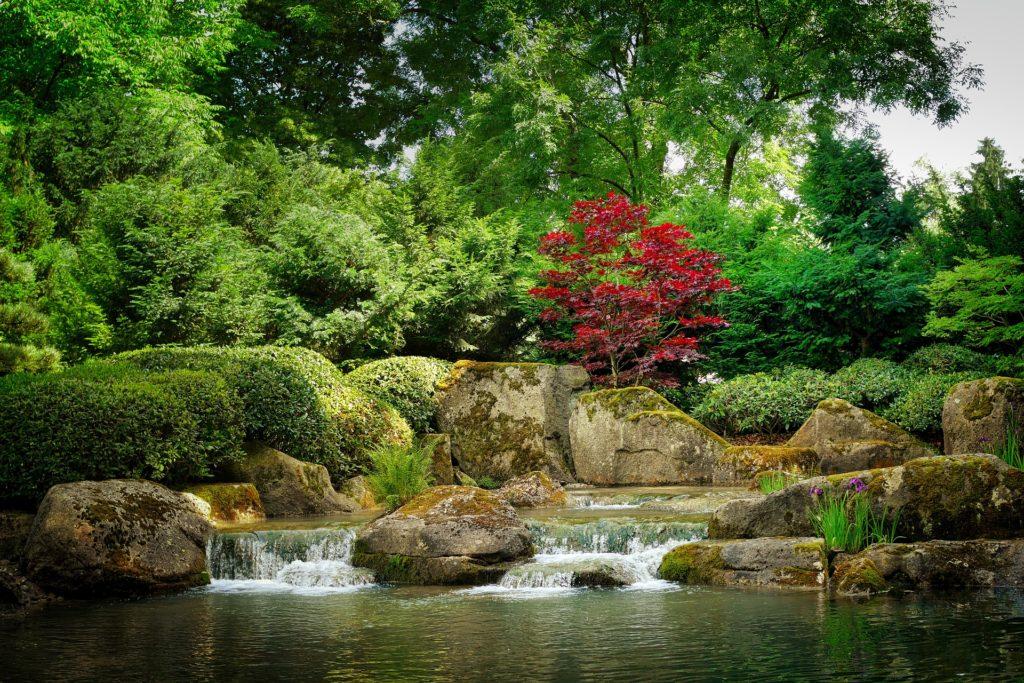 Japanese Garden 4 1024x683, Best Garden, Home And DIY Tips