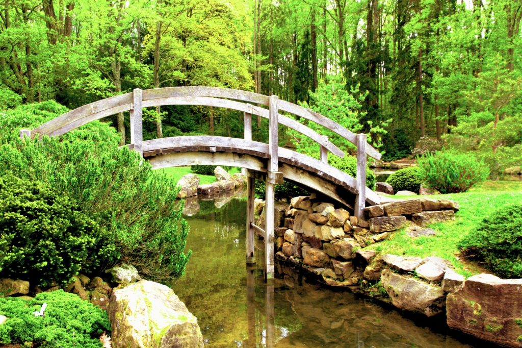 Japanese Garden 7 1024x682, Best Garden, Home And DIY Tips