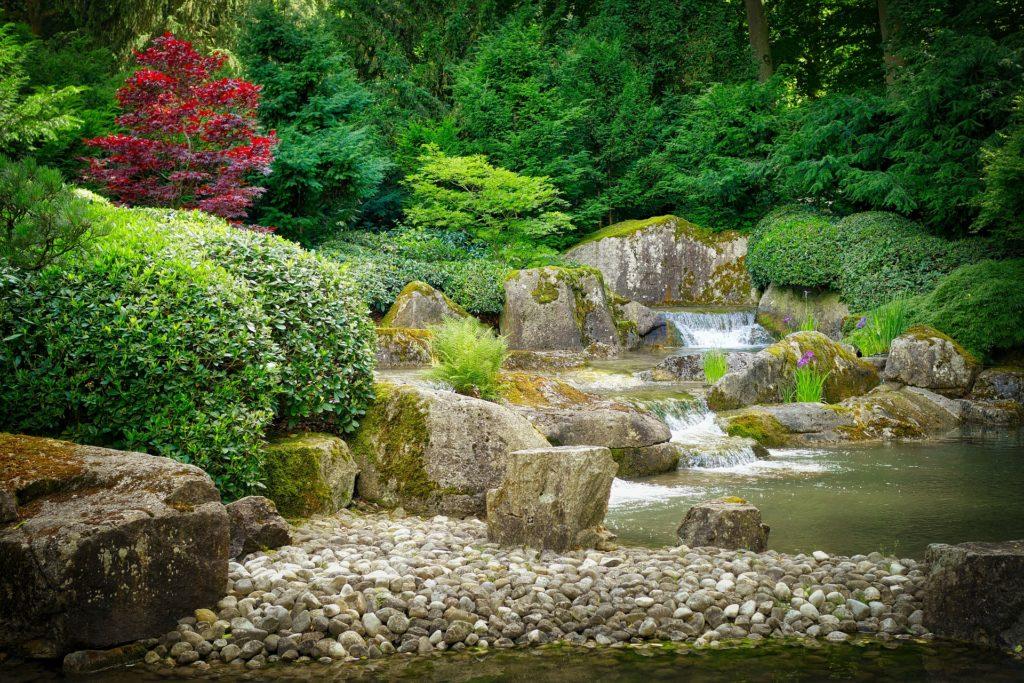 Japanese Garden 8 1024x683, Best Garden, Home And DIY Tips