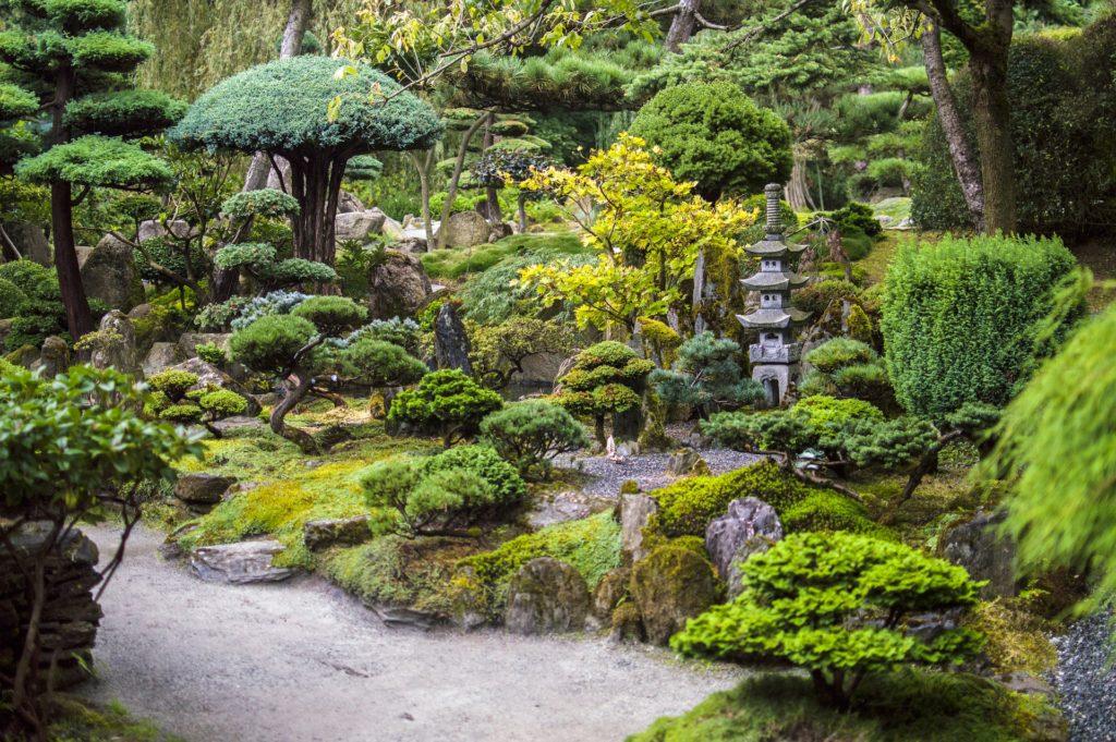 Japanese Garden 9 1024x681, Best Garden, Home And DIY Tips