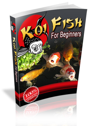 Koi Fish, Best Garden, Home And DIY Tips
