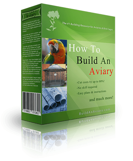 Aviary, Best Garden, Home And DIY Tips