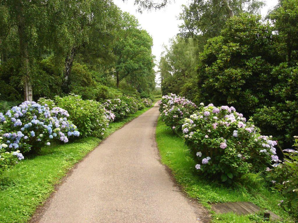 English Garden 7 1024x768, Best Garden, Home And DIY Tips