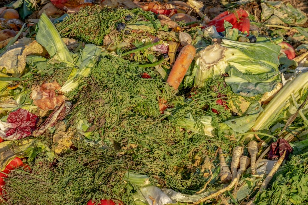 Fertilizer 10 1024x683, Best Garden, Home And DIY Tips