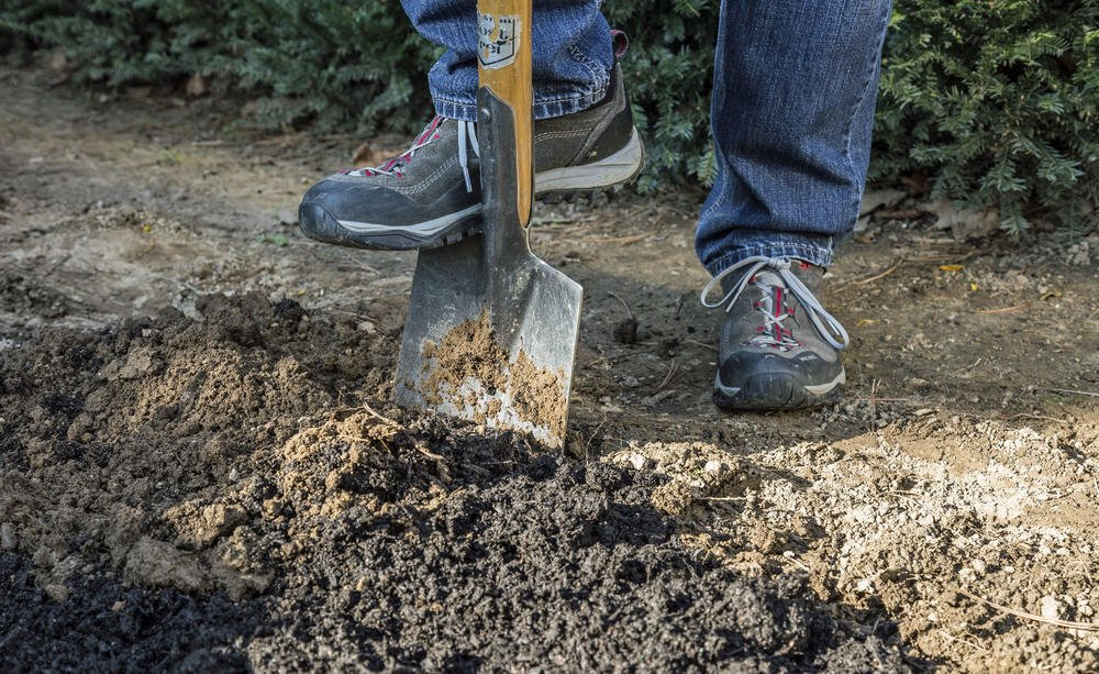 Fertilizer 2, Best Garden, Home And DIY Tips