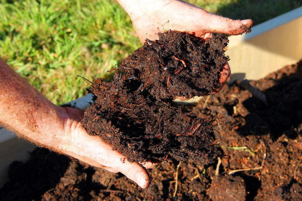 Fertilizer 5, Best Garden, Home And DIY Tips