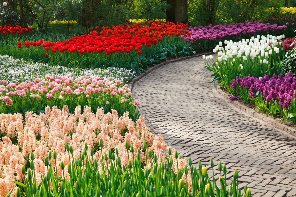 Garden Path 5 1024x682, Best Garden, Home And DIY Tips