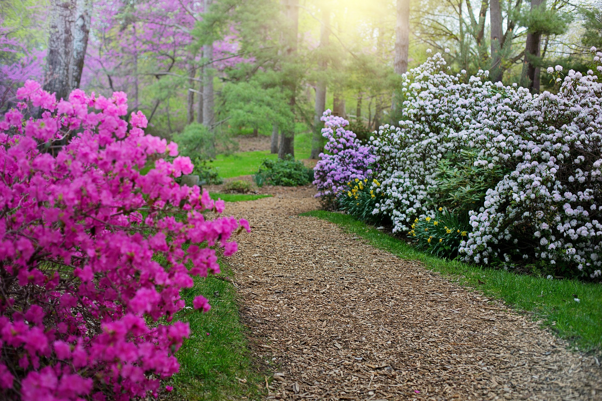 garden path, Create a garden path: Instructions for hobby craftsmen, Best Garden, Home And DIY Tips
