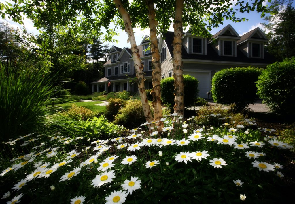 Landscaping 9 1024x711, Best Garden, Home And DIY Tips