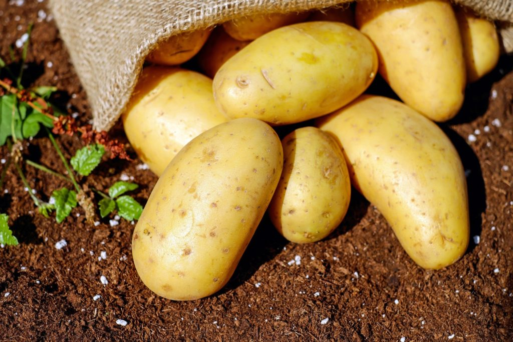 Potatoes 1024x683, Best Garden, Home And DIY Tips